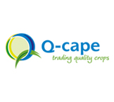 website-qcape.jpg